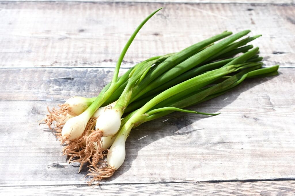 a bunch of spring onions