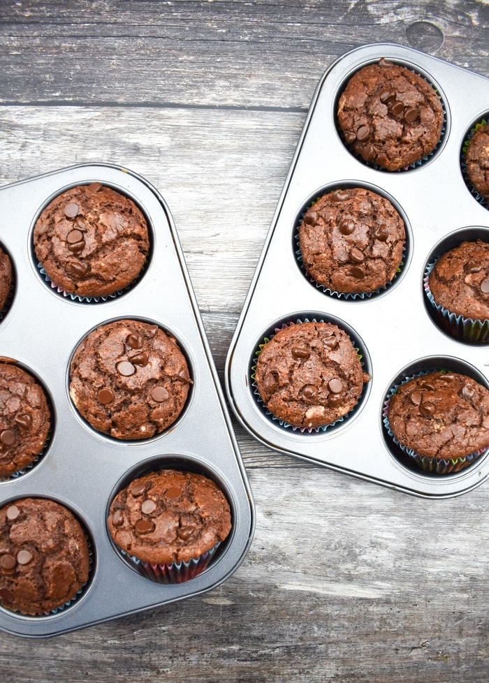 Two trays with choc chip muffins